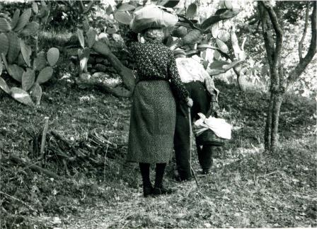 2 - Nonna Franca e nonno Pasquale nell'orto