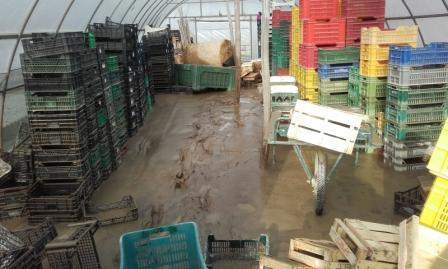 """Coldiretti Alessandria: """"Alluvione, è necessario l'intervento del commissario Chiamparino"""" CorriereAl"""