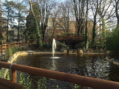 Il comune rimette a posto il laghetto dei giardini della for Pulizia fondo laghetto