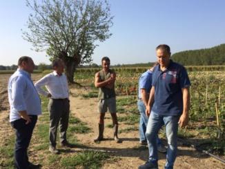 Cia Alessandria: sopralluogo dell'assessore regionale Ferrero nelle aziende danneggiate dal maltempo CorriereAl