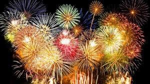 """Fuochi d'artificio con botti pericolosi per gli animali: """"perchè non farli silenziosi?"""" CorriereAl"""