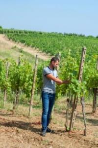 """Azienda Agricola Olivero Daniele: """"Una nuova cantina con degustazione, proprio là dove il mio bisnonno cominciò a vinificare"""" CorriereAl"""
