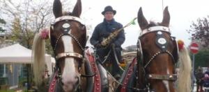 Il cavallo non è un fenomeno da baraccone CorriereAl